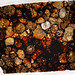 NWA 5205 Meteorite Thin Section - HDR