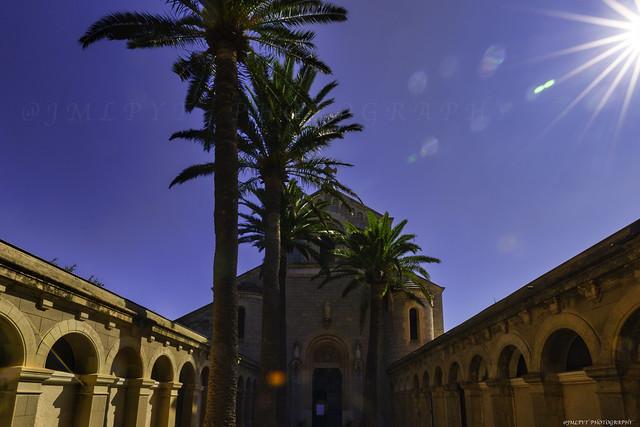 Abbaye de l'Île Saint-Honorat - Côte d'Azur France 1L8A0417-Récupéré