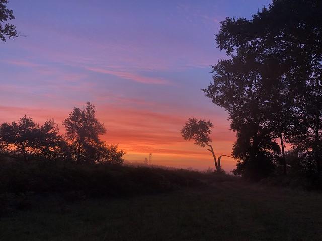 Lever du soleil à Labouheyre / Sonnenaufgang in Labouheyre / Восход солнца в Лабуэре