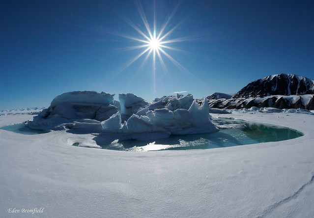Iceberg Farewell
