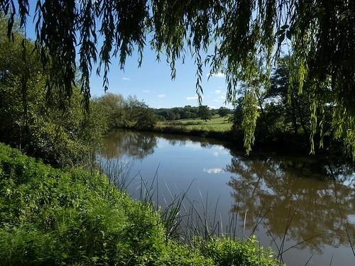 Riverside in the morning Wateringbury Circular walk