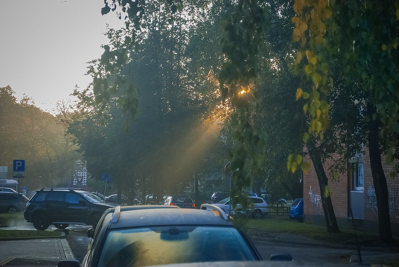 Beautiful light! 08:00:37 DSC_3814