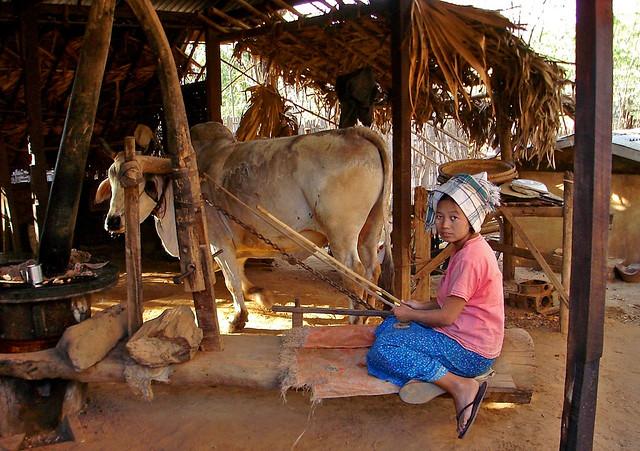MYANMAR - Near Yangon