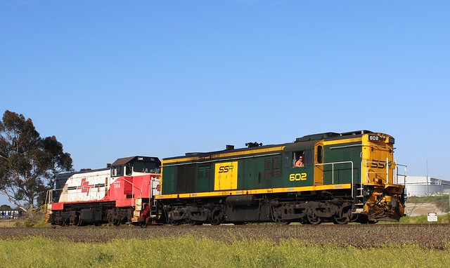 602 T414 764V L/E SCT LAVTN ALBION