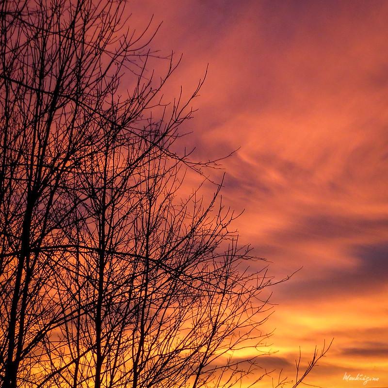 Fall Sky - Ciel d'automne