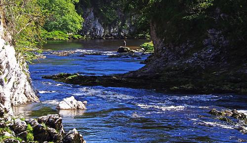 wednesdaywalk walking walk hiking hike river wharfe wharfedale fishing trout loupscar grassington burnsall bridge limestone cliff gorge hebden rapids cascades waterfall trees water olympus epl5 olympusm40150mmf4056r