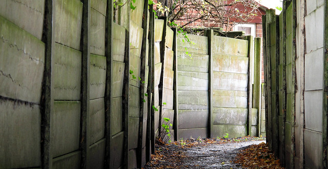 Discordant Alley