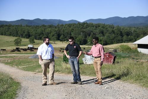 Kyle Mayberry, Biltmore Estate Livestock Director
