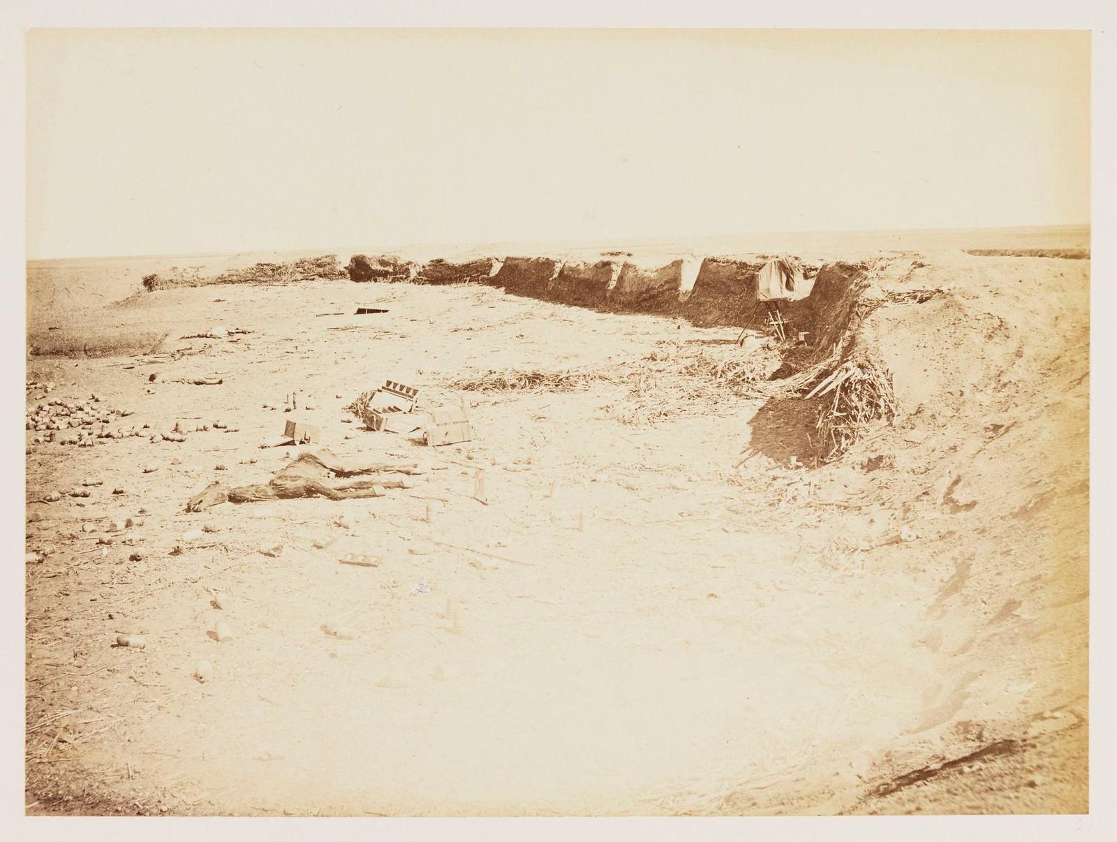 13. Фотография мертвого осла на поле битвы Тель-эль-Кебир, сделанная через три месяца после битвы