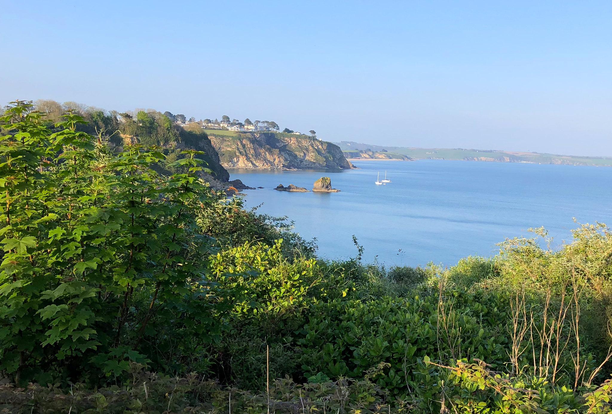 Qué ver en Cornwall, Cornualles - thewotme qué ver en cornwall - 48838131706 e8b620da66 k - Qué ver en Cornwall: ruta de 3 días