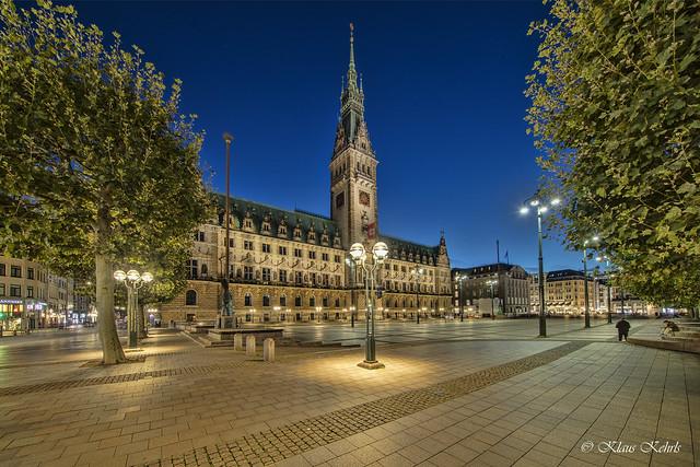 Hamburger Rathaus - 03101902