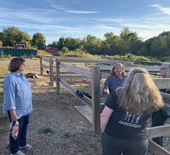 Rep. Haines toured Connecticut Draft Horse Rescue in East Hampton