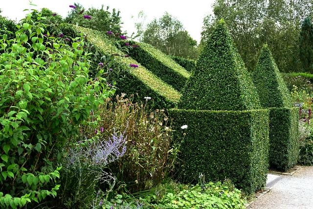 Topiary Pyramids
