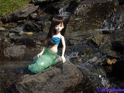 Les dolls de Harikanu : Fairyland, Cocoriang, etc. 48838534191_0f5e11406b_w