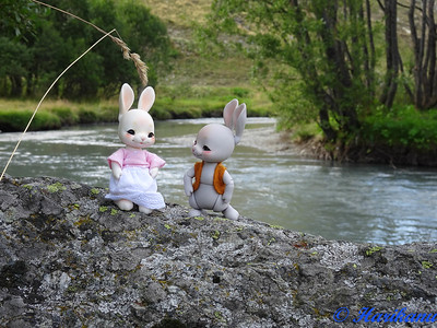Les dolls de Harikanu : Fairyland, Cocoriang, etc. 48838534541_e4e8702bd6_w