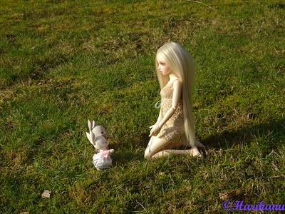 Les dolls de Harikanu : Fairyland, Cocoriang, etc. 48838709227_dc2b125832_w