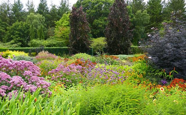Hot Garden, Rosemoor