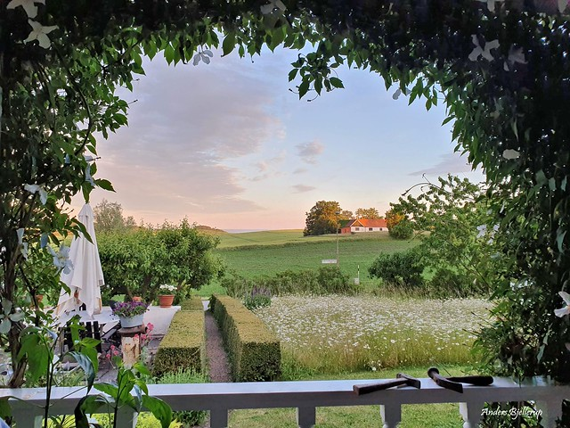Summer veranda view