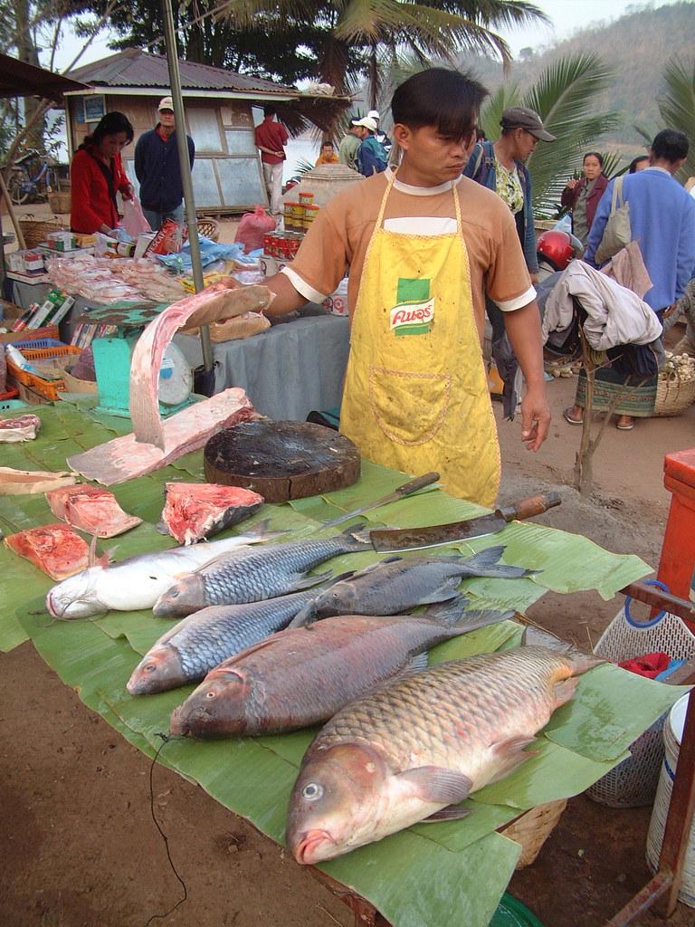 Luang Prabang, 10/02/2006