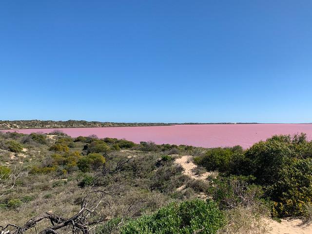 Pink Lake - Hutt Lagoon - Western Australia