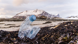 Marine litter. The everpresent crunched waterbottle. | by Snemann