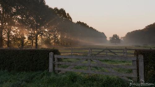 Sunrise, Sun rays (HFF)
