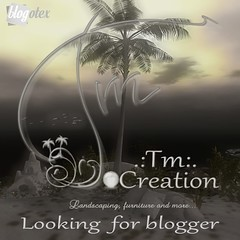 .:Tm:.Creation is looking for bloggers!