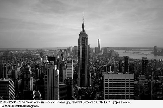 2018-12-31 0274 New York in monochrome