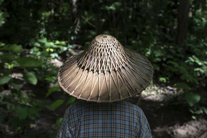 UNREDD IN_FIELD MYANMAR SEPT 2019-5477
