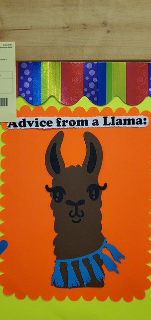 Advice from a Llama