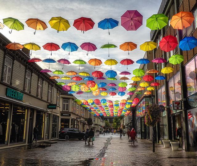 Street of Umbrellas - Trondheim, Norway