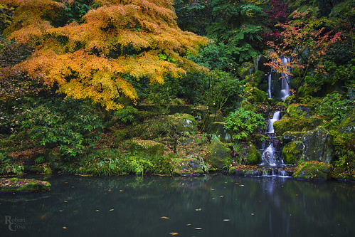 a7rii alpha emount fe1635mmf4zaoss ilce7rm2 japan japanesegarden or oregon pdx pacificnorthwest portland portlandjapanesegarden sony washingtonpark autumn city fall fullframe garden lake landscape leaves maple mirrorless pond trees urban water waterfall