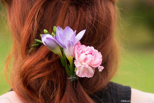 Kukkakampaus