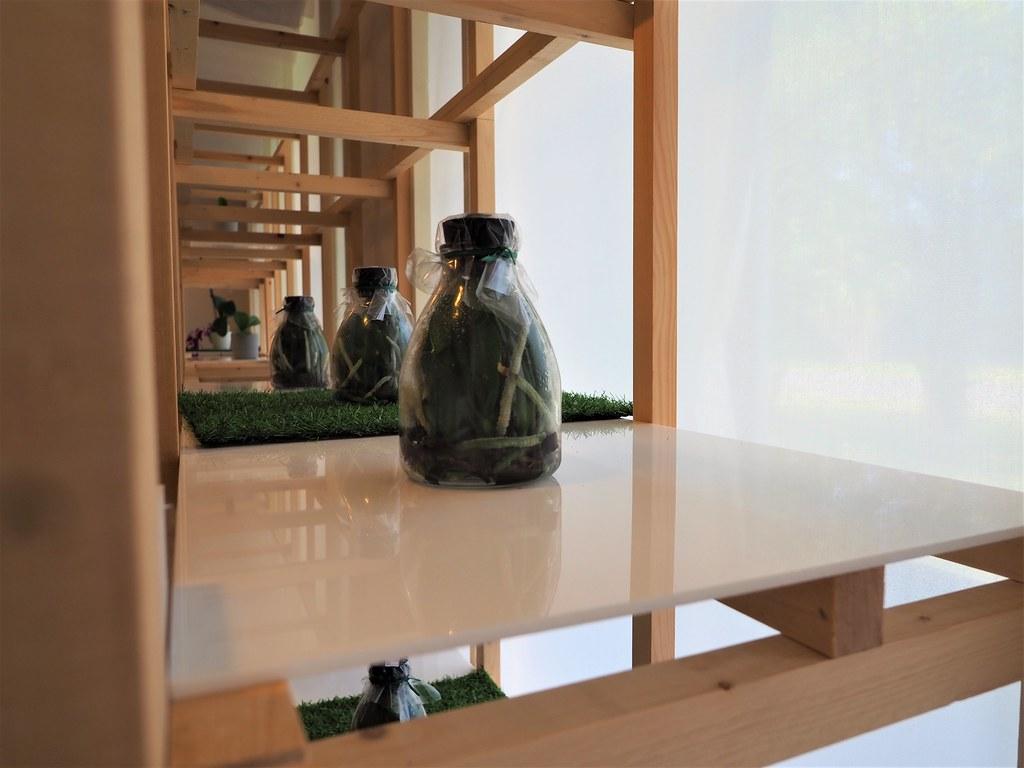 台南後壁製蝶所 (8)