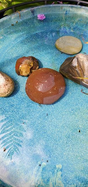 birdbath stones