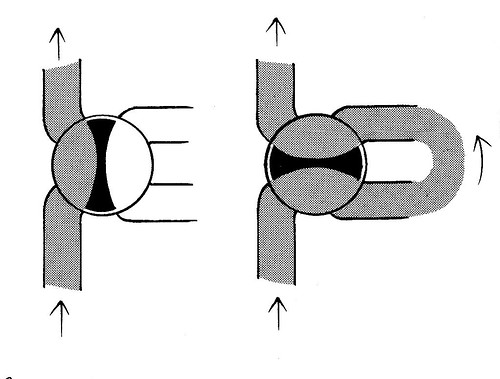 válvula rotativa
