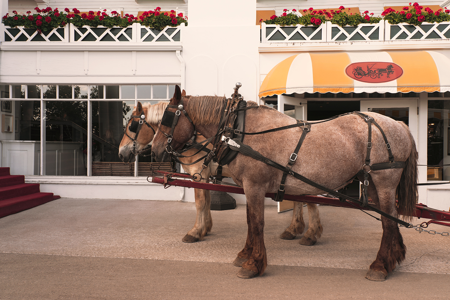 01mackinacisland-michigan-grandhotel-carriage-travel