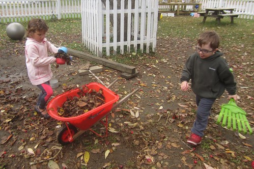 leaf collectors