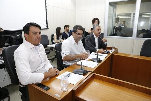 7ª Reunião – Comissão Especial de Estudo