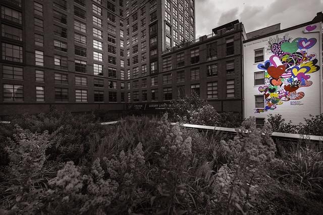 Colors on the High Line - New York City - USA