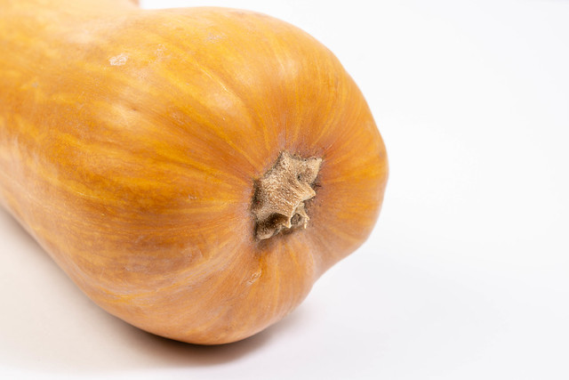 Whole Pumpkin above white background