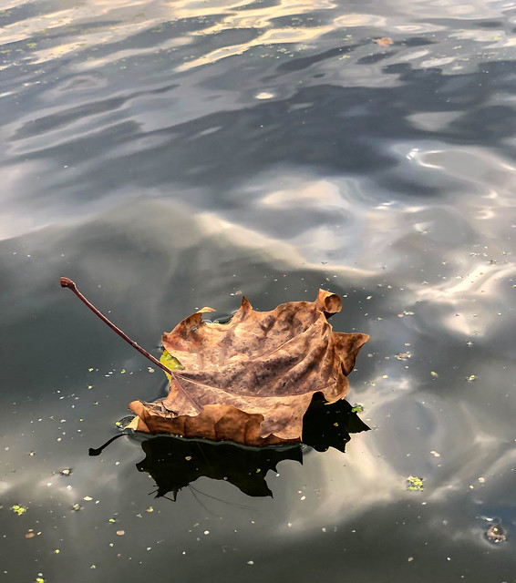 Chain O' Lakes (2)