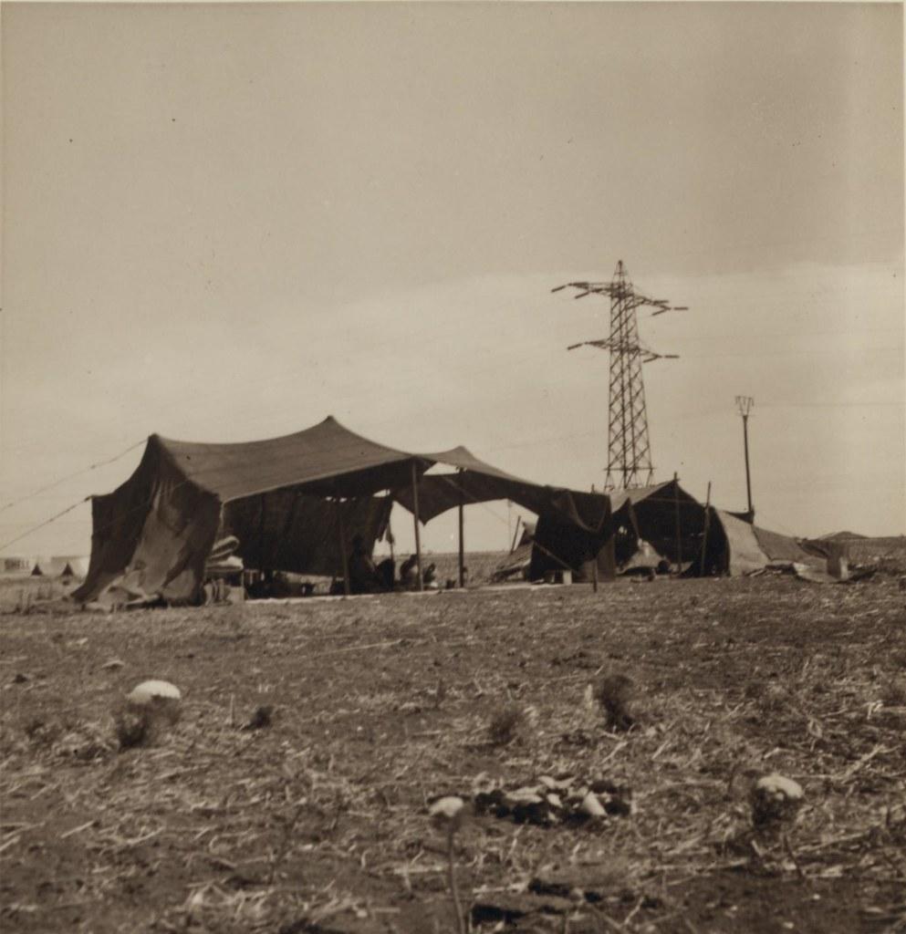 25. 6 июля. Подножие горы Кармель. Контрасты. Бедуинские палатки и мощная ЛЭП
