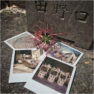 Instant Memories ... cimetière de Yanaka , Japon (5/10/2019)