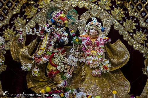 ISKCON Vrindavan Deity Darshan 05 Oct 2019