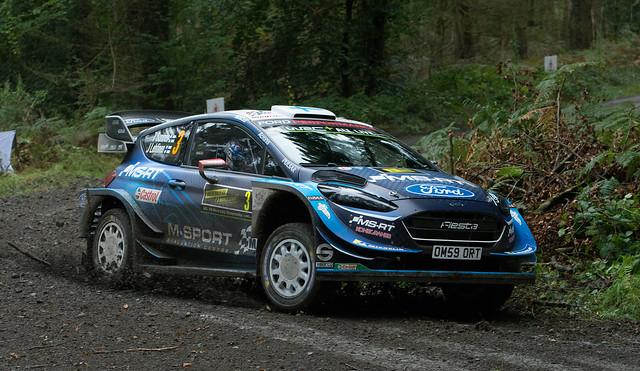 Ford Fiesta WRC - Sunninen