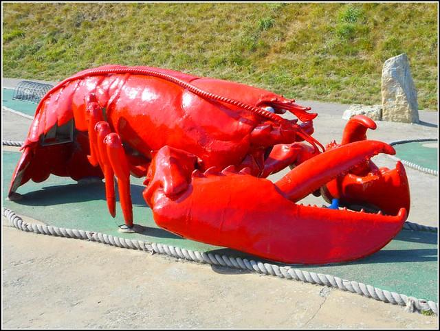 Giant Lobster ...