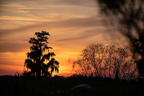 lakelandflorida sun sunset landscape florida lakeland circleb barreserve prairie