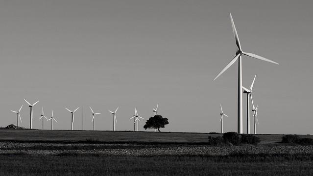 Windscape.