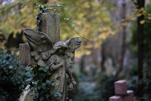 Eliza's angel